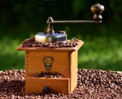 キリマンジャロ コーヒー 焙煎