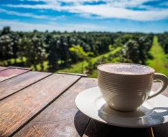 ブルーマウンテン コーヒー 産地