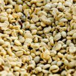 コーヒー豆の種類グアテマラの特徴について!