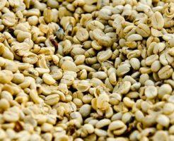 グアテマラ コーヒー豆 特徴